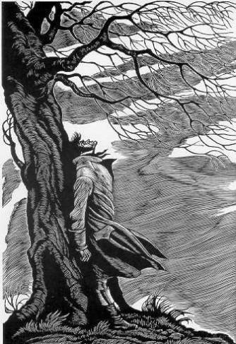 heathcliff-tree