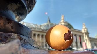 1--egg at Grand Palais